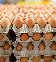 eggscrate